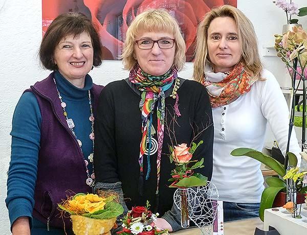 Anette Braun & Team